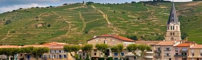 Wijn uit de Rhône