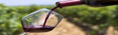 Wijn uit Navarra